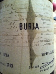 Burja-2009-Slovenië